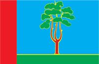Черноголовка городской флаг
