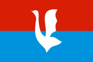 Гусь Хрустальный - городской флаг