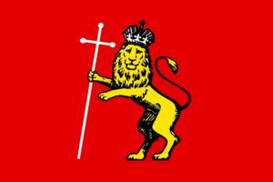 Владимир - городской флаг